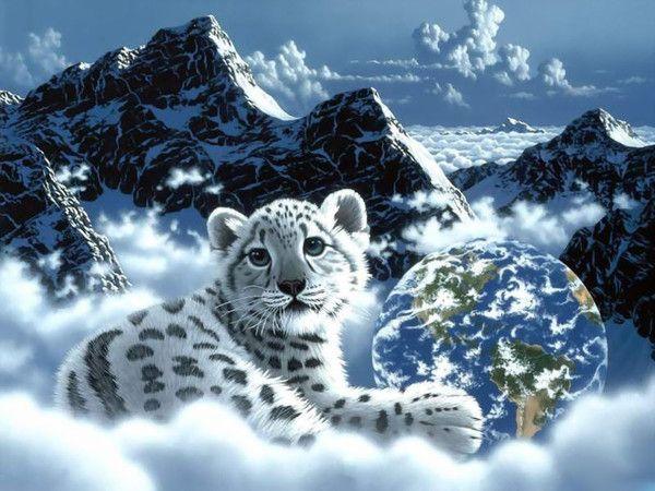 Imagenes de tigres en 3D con movimiento - Imagui